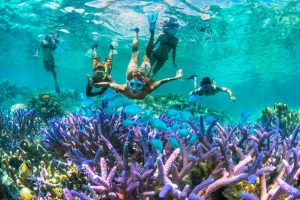 Snorkelling in Isle of Pines